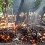 "Police Firing In Sterlite Protests Kills 9, Rahul Gandhi Says ""Murder"": 10 Points"