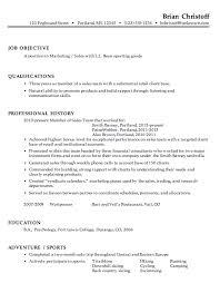 chronological resume sample  marketing saleschronological resume example marketing sales