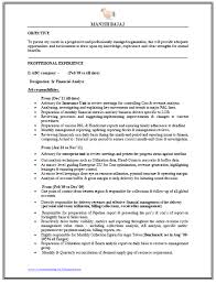 entry level data analyst resume sample  level data analyst resume    financialanalystresumeformat of of to download this business or systems analyst resume template http resumetemplates  cominformation technology
