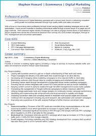 digital marketing cv example writing guide and cv template digital marketing cv example cv template