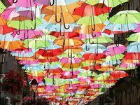 <b>Rainbow</b>: лучшие изображения (37) | Радуга, Цвета радуги и ...