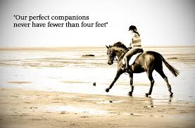 Famous Horse Quotes. QuotesGram via Relatably.com
