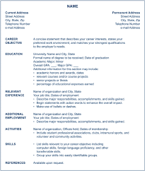 american format resume ven pure resume  updated resume format    chronological resume format