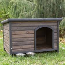 Ideas  amp  Tips  Awesome And Cool Dog Houses Ideas   Forestdefensenow orgSophisticated Log Cabin Mahogany Wood Base Cool Dog Houses   Slate Roof as Outdoor Dog House