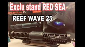 ANIMAL EXPO - EXCLU Red <b>Sea REEF WAVE</b> 25 - - YouTube