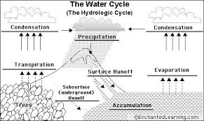 water cycle diagrams   water cycle diagramwater cycle diagrams