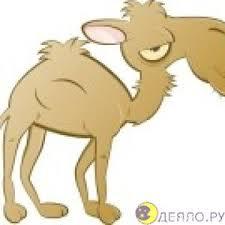 <b>Детское</b> шерстяное <b>одеяло</b> из <b>верблюжьей</b> шерсти