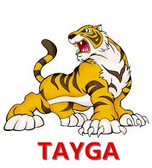 Resultado de imagem para tayga