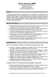 examples of resumes resume writing services top professional 85 wonderful professional looking resume examples of resumes