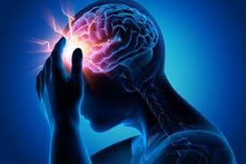 نتیجه تصویری برای مغزانسان