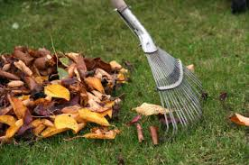 Image result for cleaning garden ideas