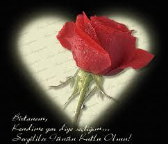 SevgiLiLer Günü ŞiirLeri..