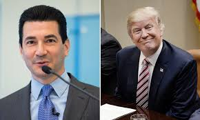 two women to be charged kim murder face being hanged trump picks dr scott gottlieb to lead the fda