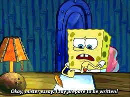 how to write an essay  unimelb adventures