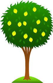 lemon tree x: images for cartoon mango tree atbjrraac images for cartoon mango tree
