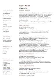 volunteer cv template charity work resume Volunteer Skills for Resume charity work personal statement examples Resume     SlideShare