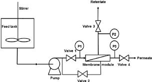 fig    schematic diagram of the ceramic membrane filtration    fig    schematic diagram of the ceramic membrane filtration system  p   p   p are manometers