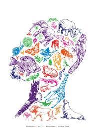 on biodiversity essay on biodiversity