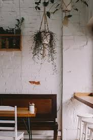 milkwood cafe melbourne hanging plants timber furniture chairs painted white cafe lighting 8900 marrakech wall