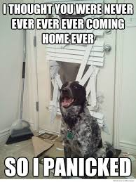 I Thought You Were Never Coming Home Again So I Panicked | WeKnowMemes via Relatably.com