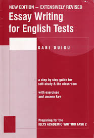 essay writing english test by gabi duigu