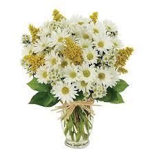 Aurora's <b>Florist</b> Country <b>Owl</b>: Aurora, OH Same-Day <b>Flower</b> Delivery ...