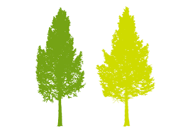 「木無料イラスト」の画像検索結果