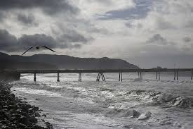 Image result for Pacifica, CA rain picture