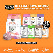 Nimanja - NOW AVAILABLE <b>Kit Cat Soya</b> Clump! . Kit Cat... | Facebook