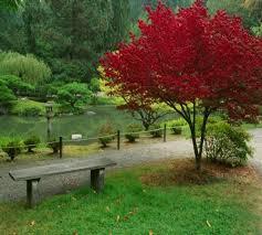 لكل محبي صور الطبيعة  اكبر تجميع لصور الطبيعة Images?q=tbn:ANd9GcRXxUfrs3MC_01_TnFgmuFs6BZ3ZgIe3-vCcTvqHVAJXlx_fhB_og