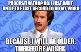 Image result for funny pictures with captions