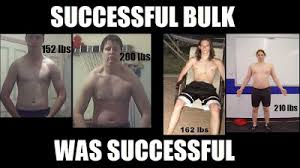 Image result for Starting Strength Zach