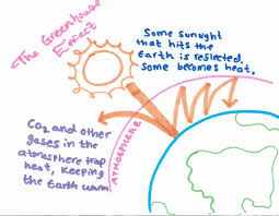 apes carbon cycle and the greenhouse effect melissa salas the carbon cycle is involved in global climate change because the co2molecule is involved in a complex series of processes called the