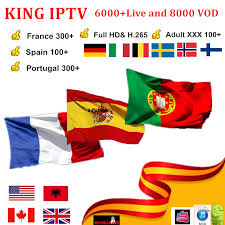 <b>French IPTV</b> subscription IPTV <b>France</b> Spain Arabic Sweden ...