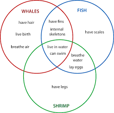 higher order thinking with venn diagrams  set venn diagram comparing whales  fish  and shrimp