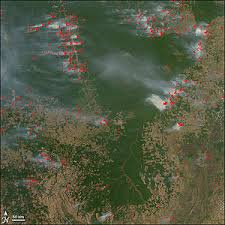 Deforestation in Brazil   Wikipedia Wikipedia A NASA satellite observation of forest fires resulting from deforestation in August       The red dots represent areas of fire