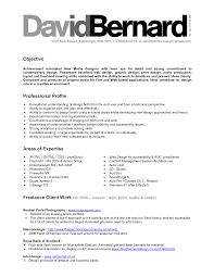 professional profile resume examples professional profile resume  profile sample resume profile sample resume professional profile  professional profile