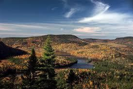 Les Français Redécouvrent le Canada & consomment d'anciennes plantes sauvages Images?q=tbn:ANd9GcRYaczcq-wuXoXYQ5GwShPfFtiiH3CIG5FN6ZKlHOrr3DLoX-fE