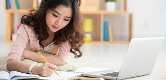 hnlw education  benefits of hiring professional essay writers online so this is how you can be benefited by hiring professional essay writers online