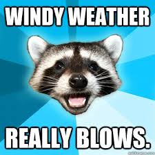 Windy weather really blows. - Lame Pun Coon - quickmeme via Relatably.com