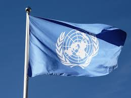 Image result for UN flag