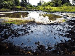 Image result for Nigerian Oil