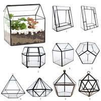 Plant Terrariums Canada | Best Selling Plant Terrariums from Top ...
