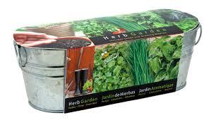 Kitchen Windowsill Herb Garden Kitchen Perfect Indoor Herb Garden White Windowsill Planters With