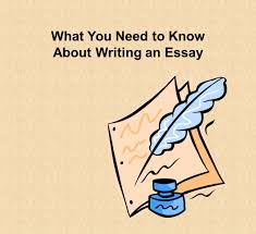 what you need to know about writing an essay the paragraph in 1 what you need