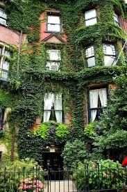house pinterest living walls ivy covered brownstone cursos de idiomas en el exterior caux intercult