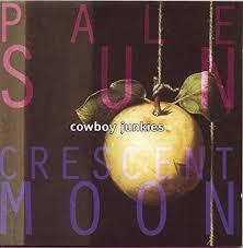 <b>Pale</b> Sun Crescent Moon: Amazon.co.uk: Music