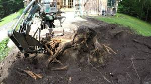 <b>Digging out</b> stumps with a <b>mini</b> excavator - YouTube