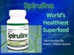 World Needs Wellness - 2 Photos - Vitamins/Supplements -