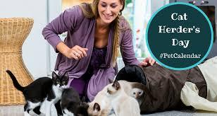 Pet Calendar: Cat Herder